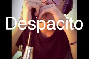 despacito唢呐版mp3下载